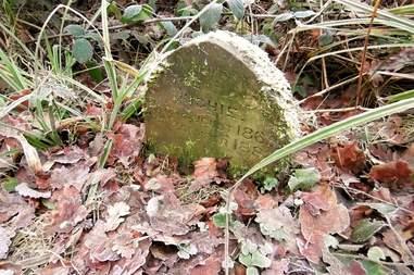 rabbit grave england