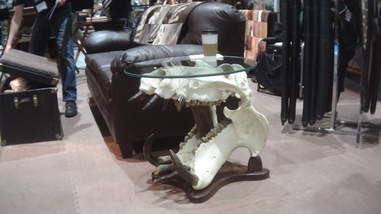 Table made from hippo skull