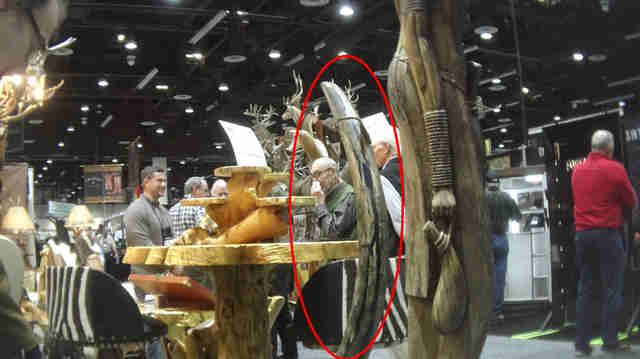 Mammoth tooth being sold at hunting convention