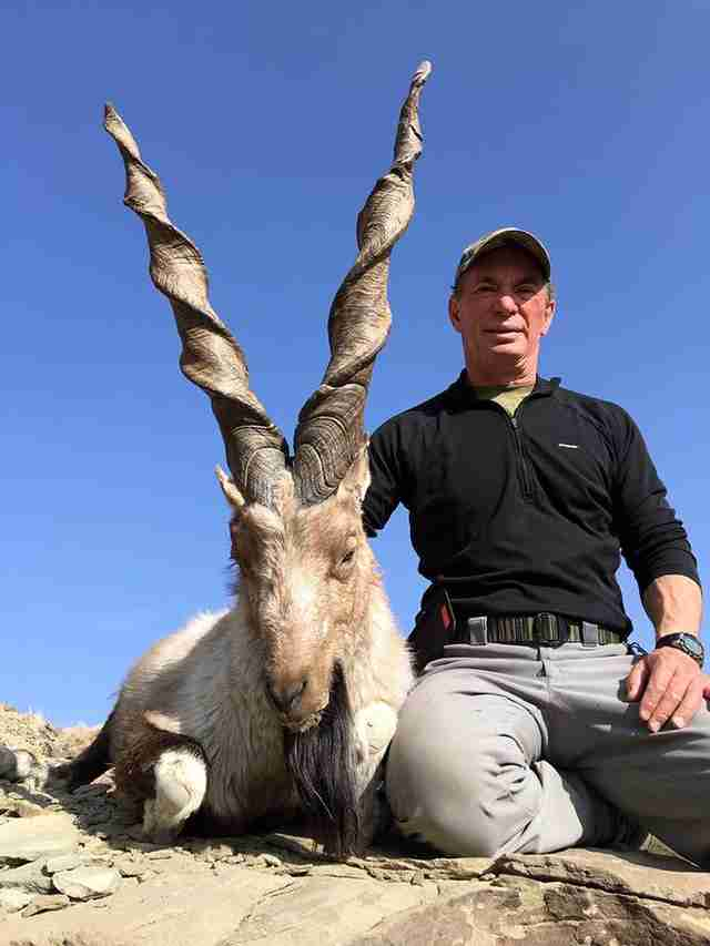 trophy hunting goat pakistan