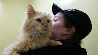 Cat saved from abandoned house in Washington State