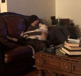 Chubby shelter snuggles her foster dad