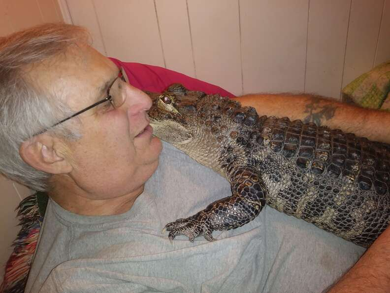 Pennsylvania man and his emotional support alligator who helps him with depression