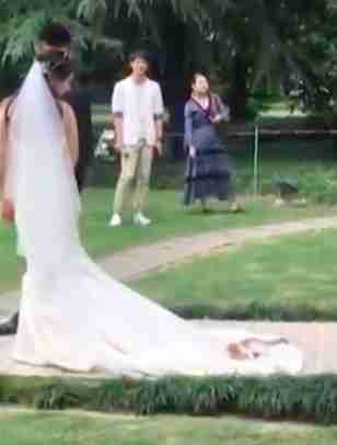 Random cat taking cozying up on Chinese bride's wedding dress