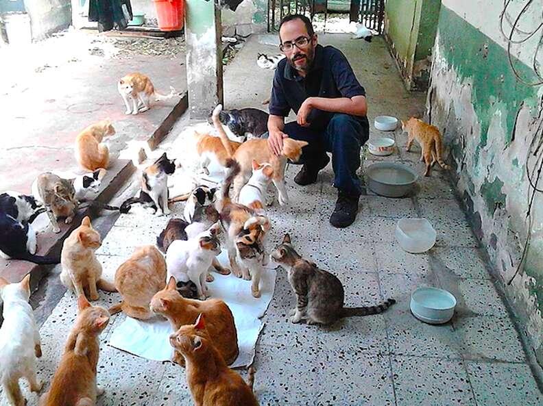 Cat sanctuary in Venezuela