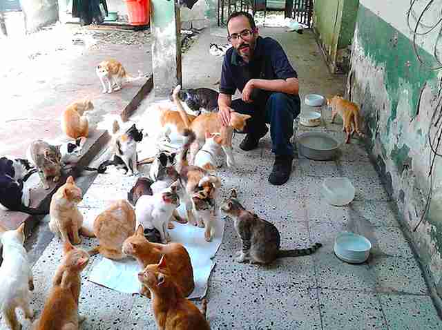 Cat sanctuary in Venezuela