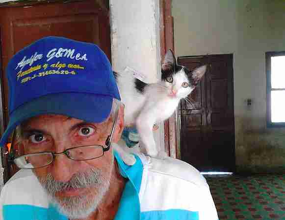 Venezuela cat sanctuary