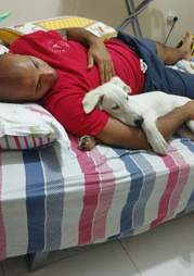 Snowy the rescued street dog cuddles with his dad