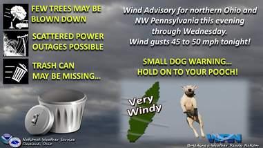 small dog warning