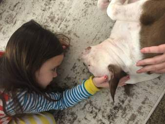 Little girl with her new rescue dog