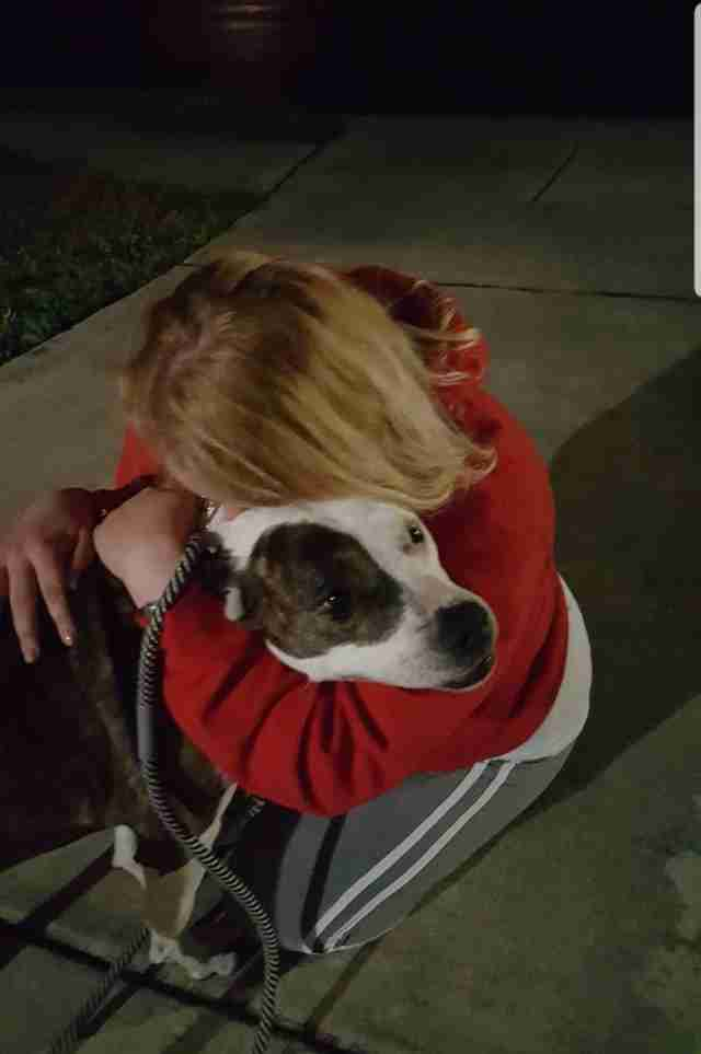 Sophia Hanson sees her dog Laila again after 8 years