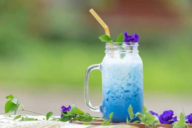 iced butterfly pea tea blue latte drink