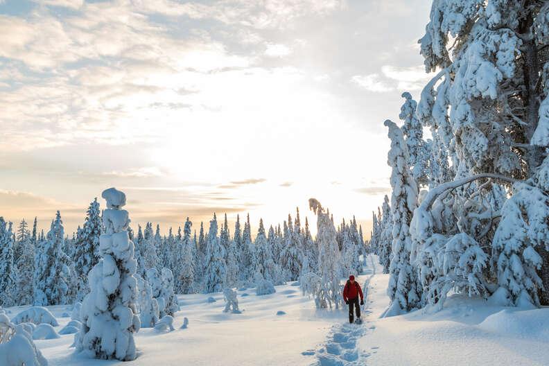 Riisitunturi, Lapland
