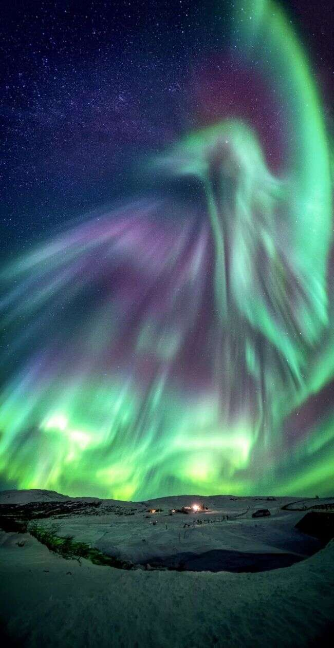 dragon aurora