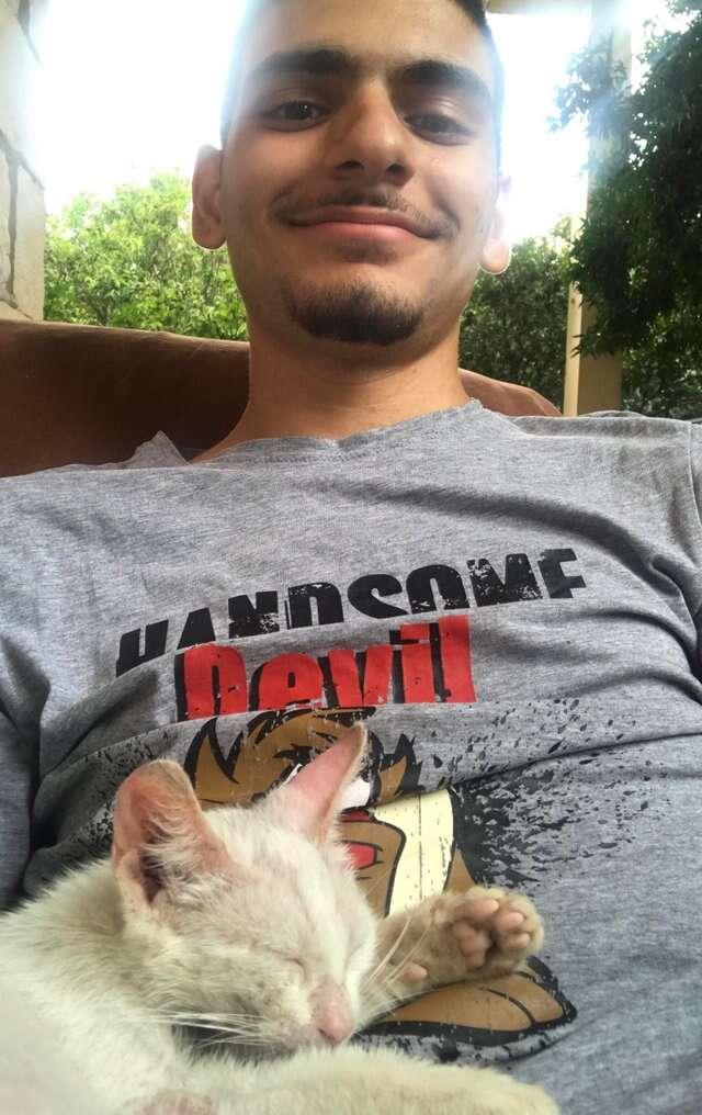Stray cat sleeping on a guy