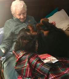 Rottweiler snuggles grammy in bed