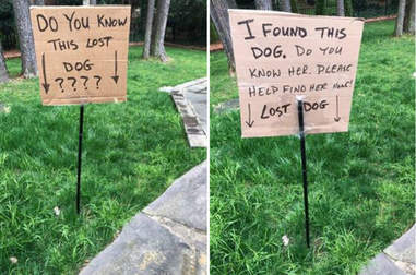 Guy holding a lost dog sign