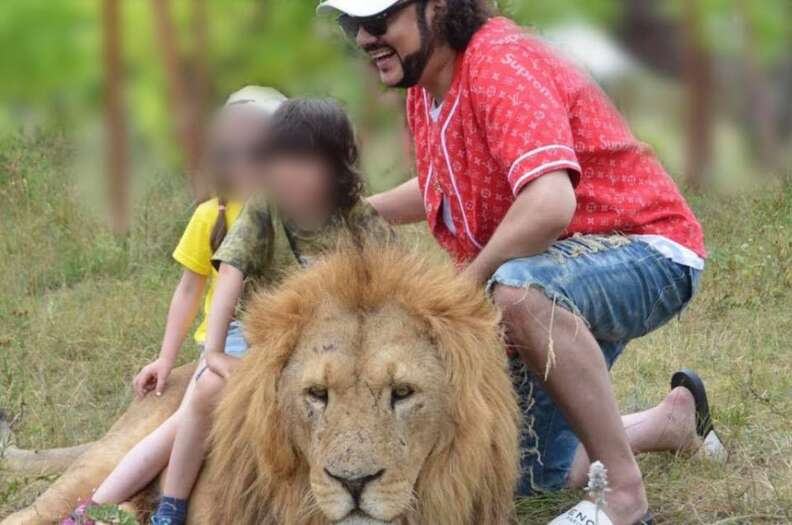 lion pose crimea