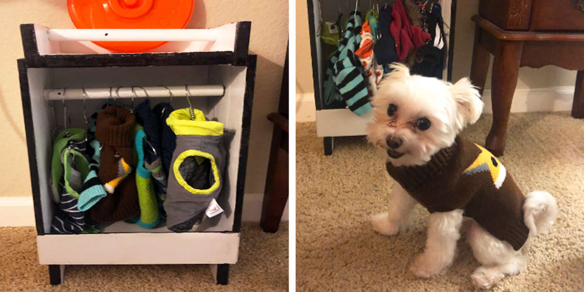 Dog Loves Clothes So Much His Grandpa Built Him An Adorably Tiny Closet