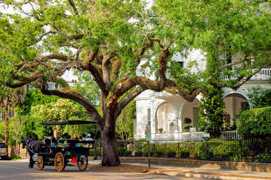 Charleston's neighborhoods are perfect for roaming.