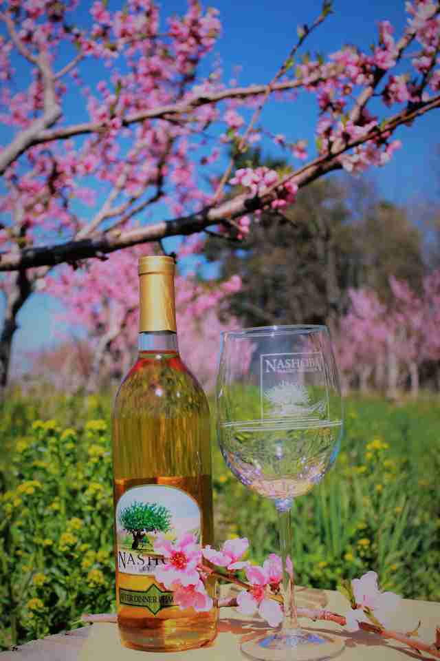 Nashoba Valley Winery, Orchard and Restaurant