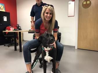 dog rescue crooked smile