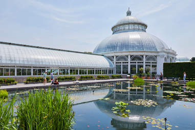 nybg haupt conservatory