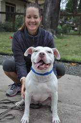Nellie the pitbull and foster mom Jane Taylor