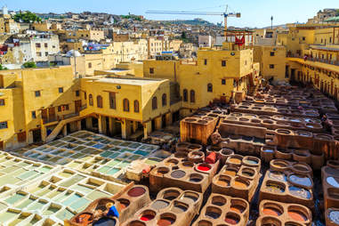 er dying in a traditional tannery in the city Fes, Morocco