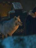 ghost jon snow game of thrones