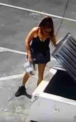 Video Captures Woman Throwing Away Puppies Near Coachella