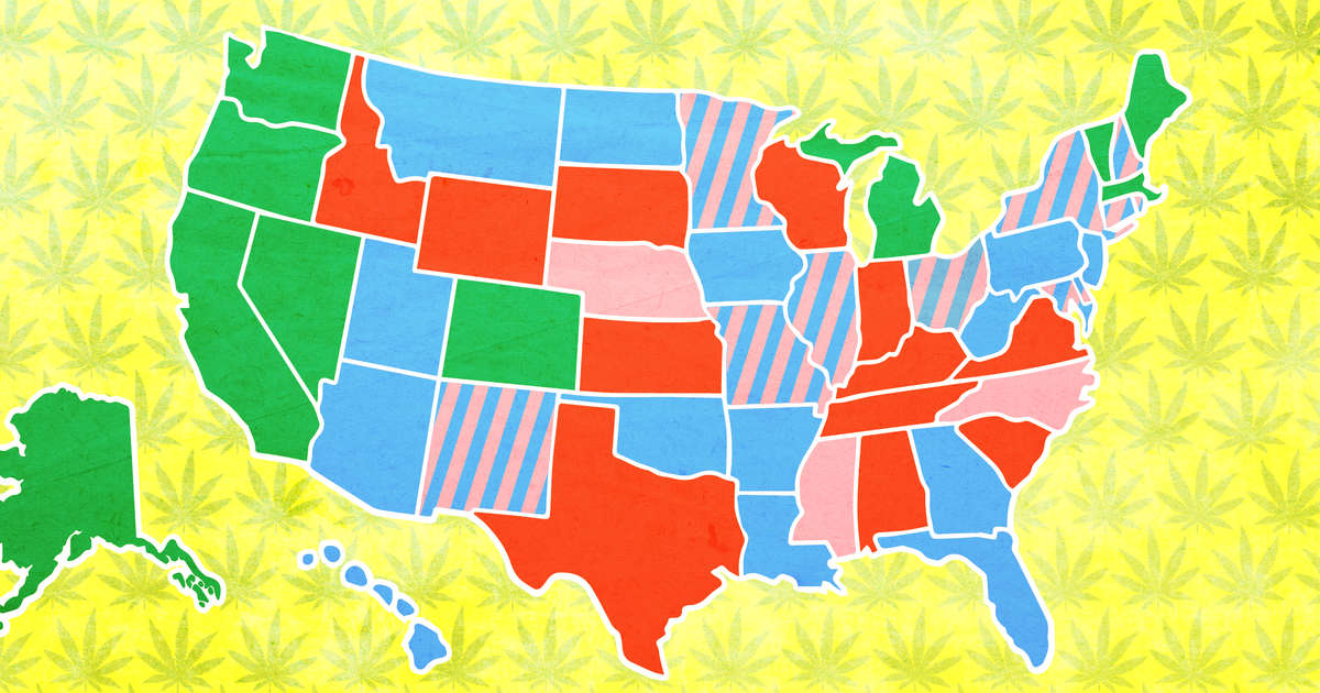 What States Have Legalized Weed Weed Laws In All 50 States