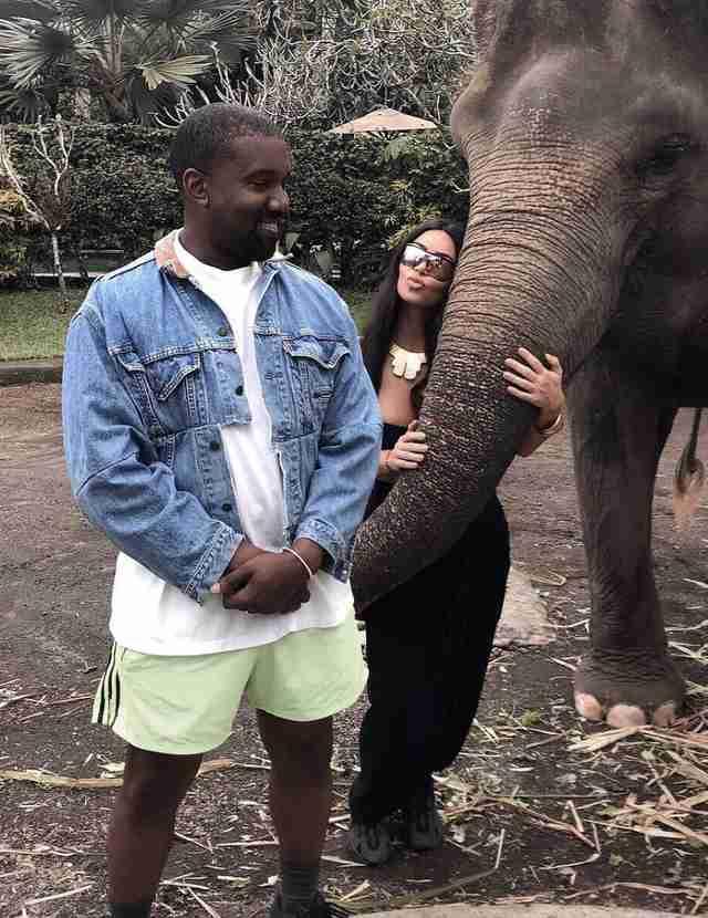 promenades à dos d'éléphant