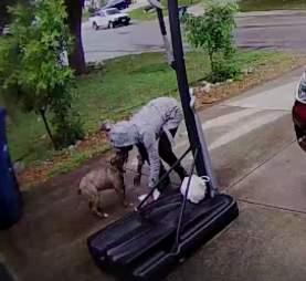 Woman ties dog to basketball hoop in San Antonio