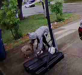 Woman ties dog to basketball hoop in San Antonio