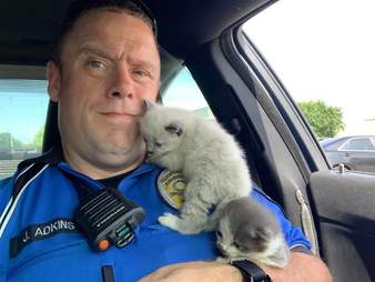 police officer cuddles kittens