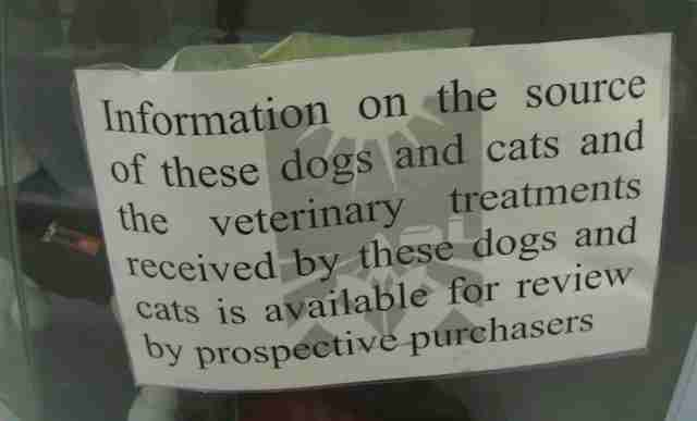 Sign in pet store window about information disclosure