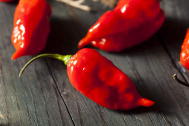 ghost pepper chile