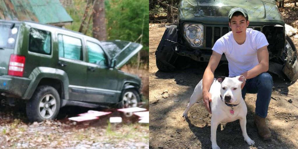Cô chó Pit bull dũng cảm cứu chủ sau tai nạn xe hơi bất ngờ
