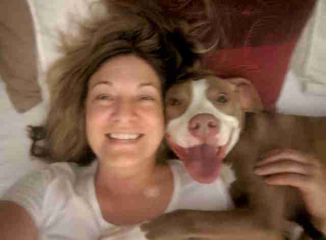 Foster mom sings adoptable pit bull's praises