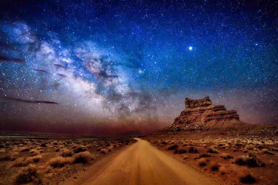 Stargazing Creatures