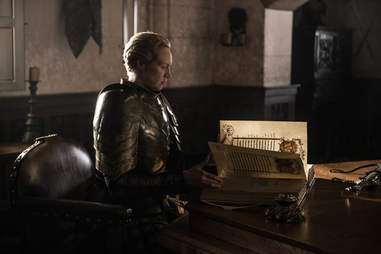 brienne of tarth book of brothers