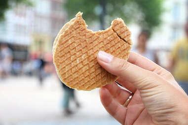 Dutch stroopwafel stroopwafels netherlands pastry waffle