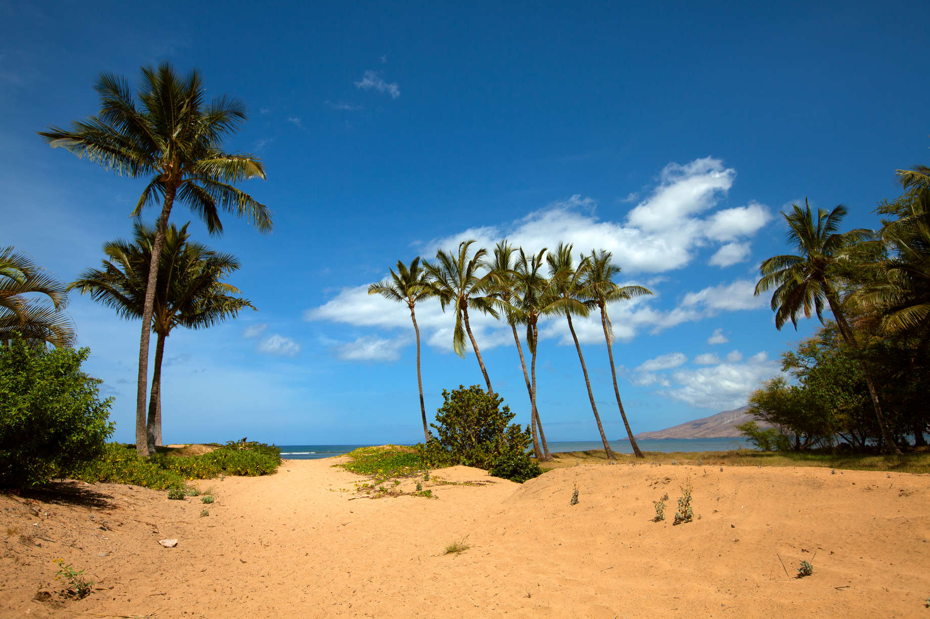 Best Beaches in Hawaii: Most Beautiful and Scenic Beaches to