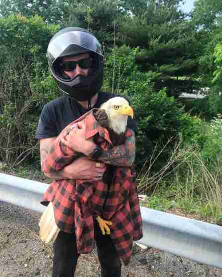 Man holds bald eagle wrapped in his shirt