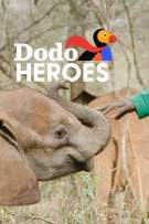 Dodo Heroes cover art