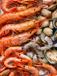 shrimp clam and mussels clams prawns seafood sustainable sustainability eco friendly