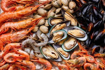 shrimp clam and mussels