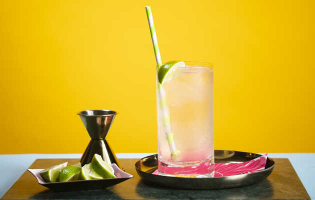 Coconut Gin & Tonic: So Much More than the Sum of Its Parts