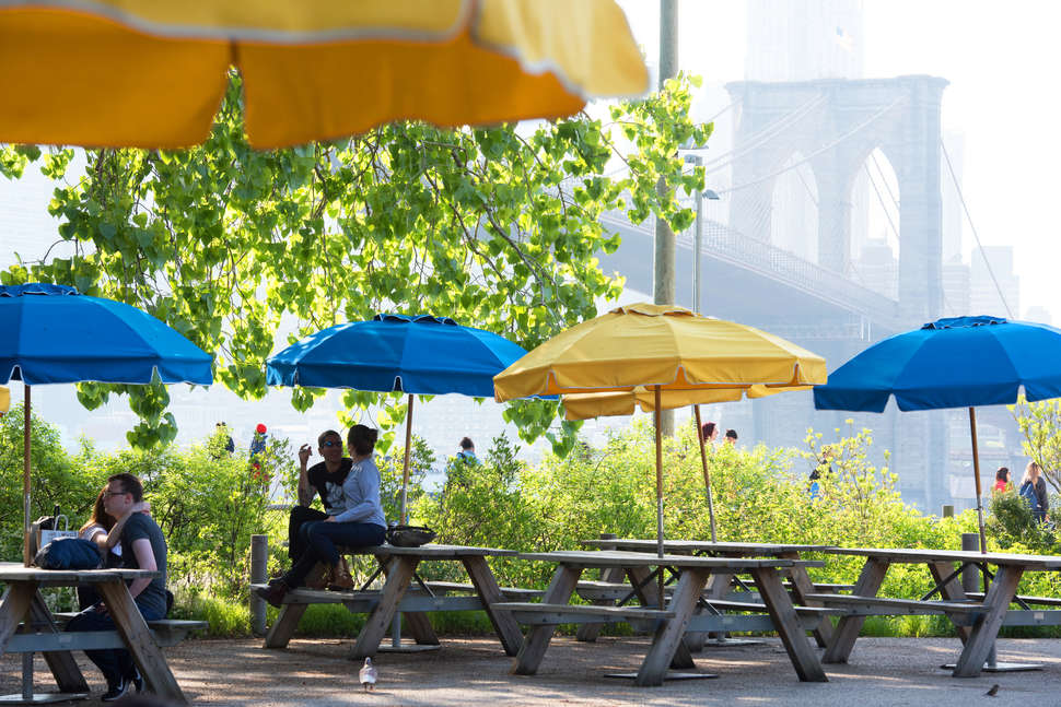 Brooklyn Bridge Park picnic area